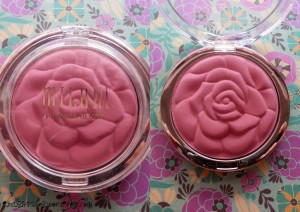 Review Milani2