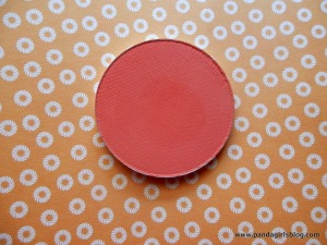 Makeup Geek Summer Fling Bush